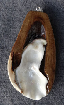 Muschelschale in Apfelholz/ lackiert
