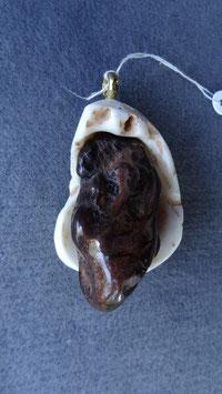 versteinerte Muschelschale + Myrtenholz
