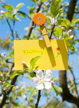 Frühlingsgruß, Briefkarte