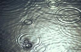 Regen auf der Peene, Briefkarte