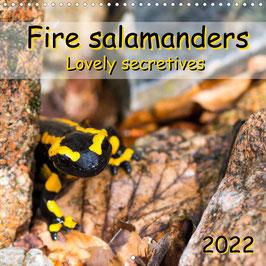 Fire salamanders - Lovely secretives (2022)