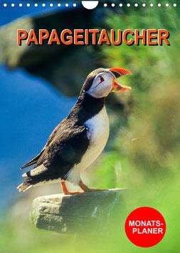 Papageitaucher Monatsplaner (2022)