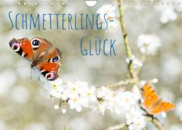 Schmetterlings-Glück (2022)