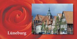 Altstadt, St. Michaelis-Kirche, Rose