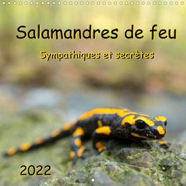 Salamandres de feu - Sympathiques et secrètes (2022)