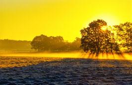 Goldener Herbstmorgen, Briefkarte