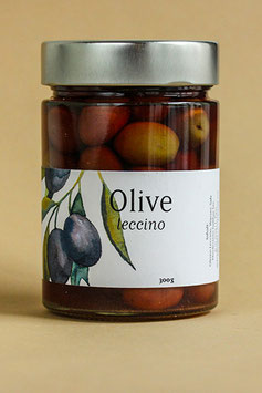 olive leccino