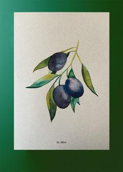 Plakat Oliven