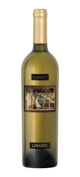 Galiò Bianco prodotto da uve nere Gaglioppo