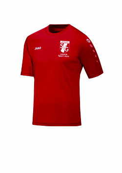 Trikot Team Trainingsshirt)