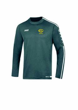 Sweatshirt (grau)