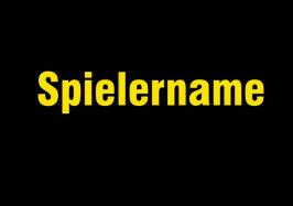 Zusatzdruck Spielername (BITTE IM WARENKORB ANGEBEN AUF WELCHEN ARTIKEL DIESER GEDRUCKT WERDEN SOLL)