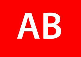 Zusatzdruck Brustnummer (BITTE IM WARENKORB ANGEBEN AUF WELCHEN ARTIKEL DIESER GEDRUCKT WERDEN SOLL)