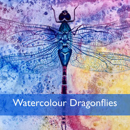 Watercolour Dragonflies Wed 12th February 2019