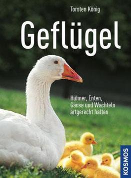 Geflügel  Hühner, Enten, Gänse und Wachteln artgerecht halten