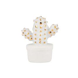 """Glückskästchen Kaktus """"Du bist einfach spitze"""" von räder"""