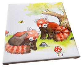 Bild: Roter Panda
