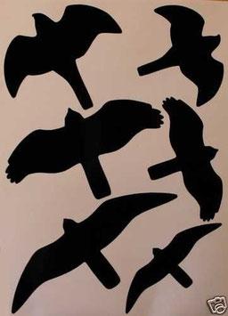Tierset - Vogel