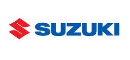 Suzuki Innenraumbeleuchtung Komplettset