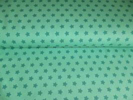 Jersey Sterne türkis grün