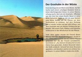 """Postkarte """"Der Grashalm in der Wüste"""""""