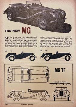 Ad on wood [MG13]