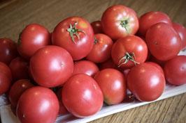 完熟トマト&ミニトマト