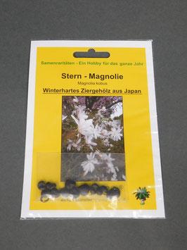 Stern-Magnolie / Magnolia kobus, Freiland, Geschenkidee, Samen