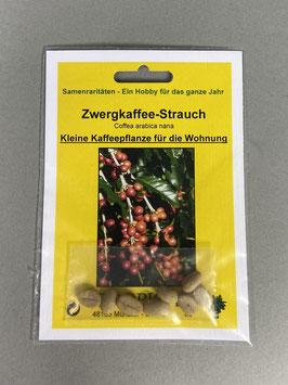 Zwergkaffee-Strauch, Coffea arabica nana, Geschenkidee, Seltene Samen, Besonderheit, Rarität