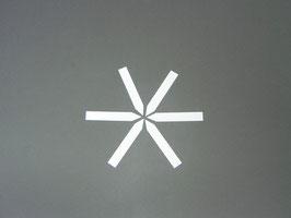 Stecketiketten 2,0x12cm