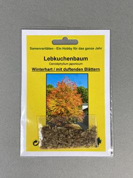 Lebkuchenbaum-Katsurabaum, Cercidiphyllum japonicum, Geschenkidee, Seltene Samen, Besonderheit, Rarität