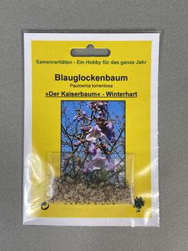 Blauglockenbaum, Paulownia tomentosa, Geschenkidee, Seltene Samen, Besonderheit, Rarität
