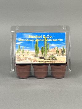 Stachel & Co., Geschenkidee, Mini-Gewächshaus mit Samen