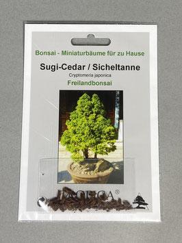 Samen+Anzuchtset: Sugi Cedar / Jap. Sicheltanne, Zimmer- / Freiland-Bonsai, Geschenkidee, Bonsai-Samen