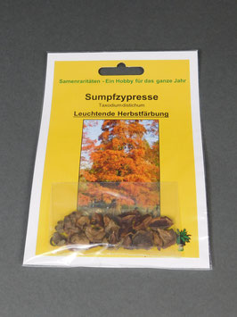 Sumpfzypresse, Taxodium distichum, Geschenkidee, Seltene Samen, Besonderheit, Rarität