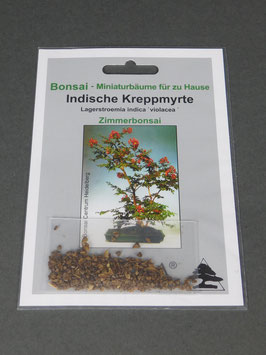 Indische Kreppmyrte, Lagerstroemia indica violacea, Zimmerbonsai, Geschenkidee, Bonsai-Samen