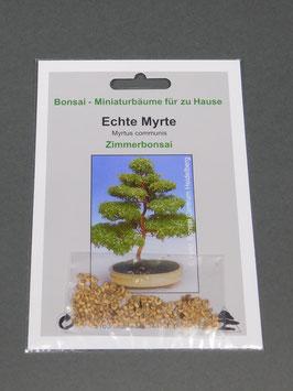 Echte Myrte, Myrtus communis, Zimmerbonsai, Geschenkidee, Bonsai-Samen im Geschenkkarton