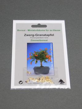 Zwerg-Granatapfel, Punica granatum nana, Zimmerbonsai, Geschenkidee, Bonsai-Samen im Geschenkkarton