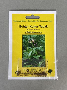 Echter Kultur-Tabak 'Petit Havana', Nicotiana tabacum, Geschenkidee, Seltene Samen, Besonderheit, Rarität