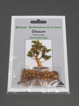 Samen+Anzuchtset: Ölbaum, Olea europea, Zimmerbonsai, Geschenkidee, Bonsai-Samen