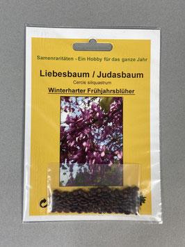 Liebesbaum / Judasbaum, Cercis siliquastrum, Geschenkidee, Seltene Samen, Besonderheit, Rarität