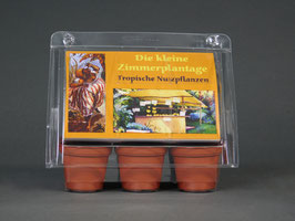 Die kleine Zimmerplantage, Geschenkidee, Mini-Gewächshaus mit Bonsai - Samen