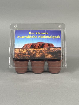 Der kleinste australische Nationalpark, Geschenkidee, Mini-Gewächshaus mit Samen