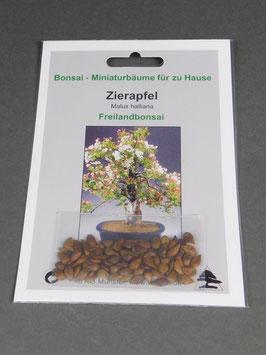 Zierapfel, Malus halliana, Freilandbonsai, Geschenkidee, Bonsai-Samen