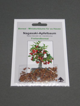 Nagasaki - Apfelbaum, Malus baccata var. mandshurica, Freilandbonsai, Geschenkidee, Bonsai-Samen im Geschenkkarton