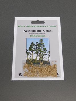 Australische Kiefer, Casuarina equisetifolia, Zimmerbonsai, Geschenkidee, Bonsai - Samen