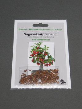 Nagasaki - Apfelbaum, Malus baccata var. mandshurica, Freilandbonsai, Geschenkidee, Bonsai-Samen