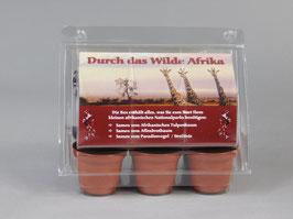 Durch das wilde Afrika, Geschenkidee, Mini-Gewächshaus mit Samen