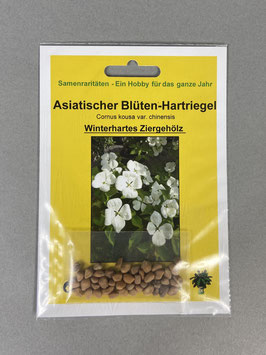Asiatischer Blüten-Hartriegel, Cornus kousa `chinensis` Geschenkidee, Seltene Samen, Besonderheit, Rarität