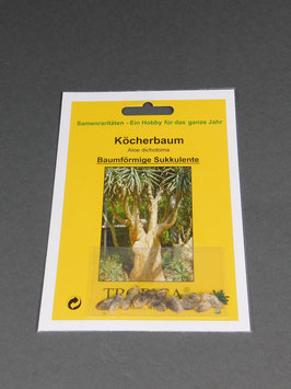 Köcherbaum, Aloe dichotoma, Geschenkidee, Seltene Samen, Besonderheit, Rarität